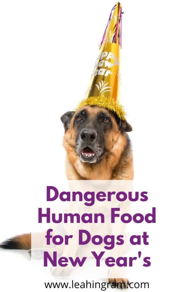 _dangerous human food for dogs at new years eve