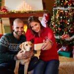 holiday dog photos