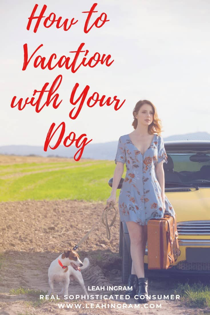 how to vacation with your dog