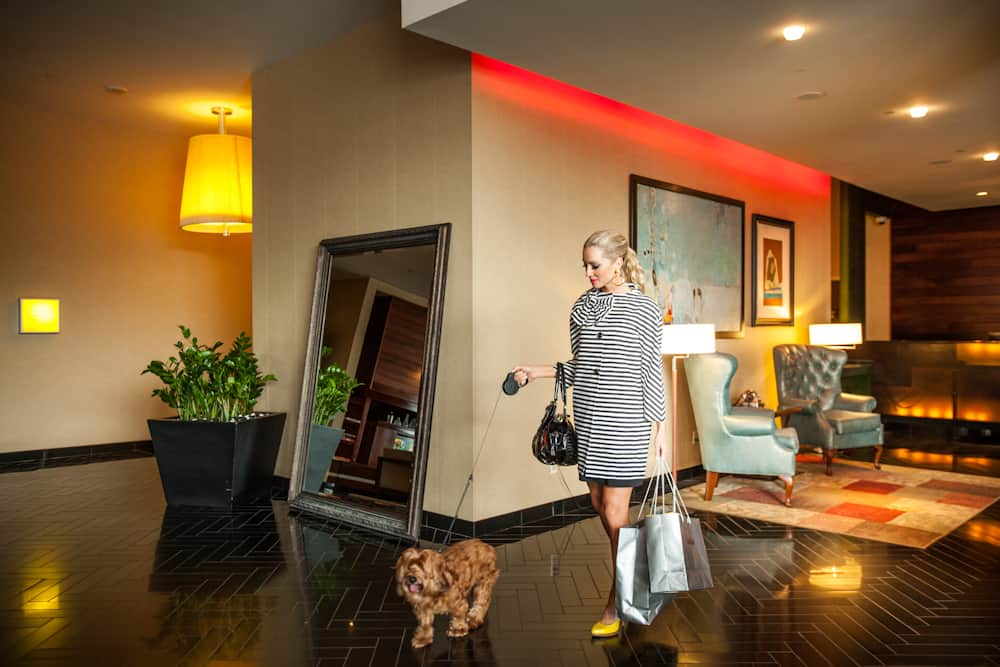 Best Hotels When Traveling with Pets