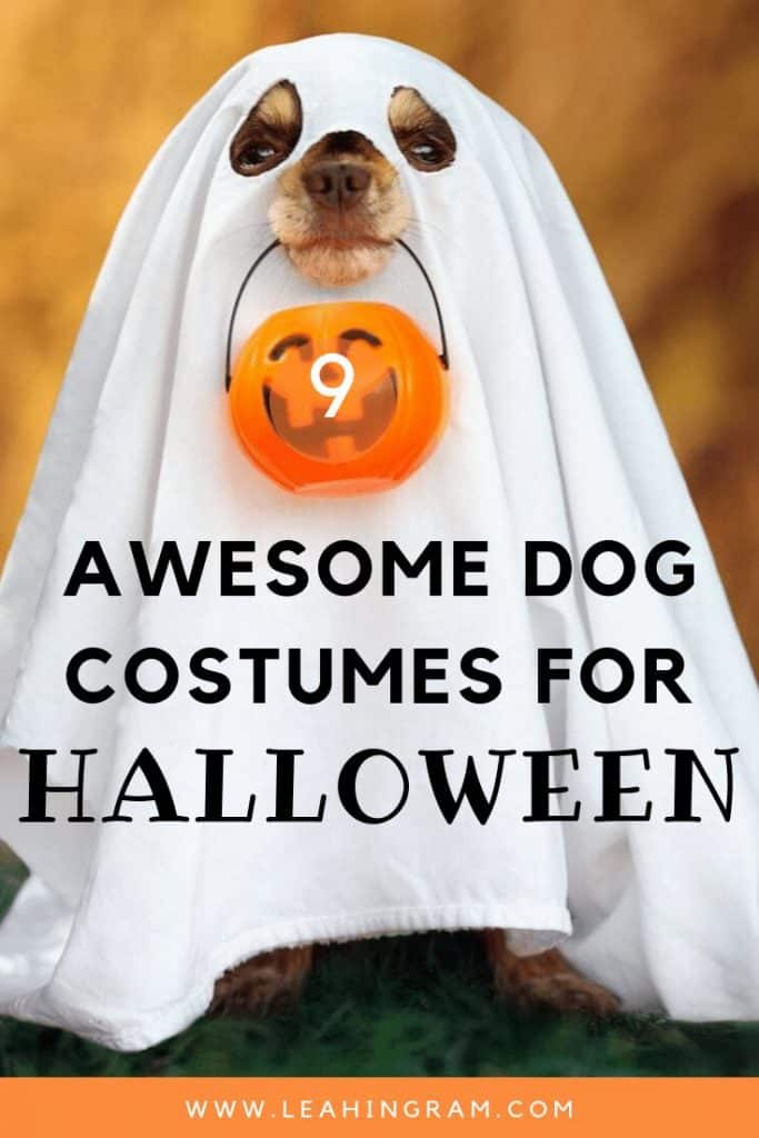 awesome dog costumes halloween