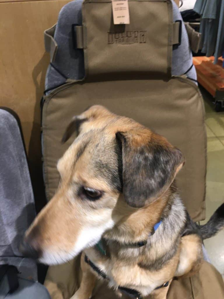 outdoor gear companies car seat cover with dog duluth trading