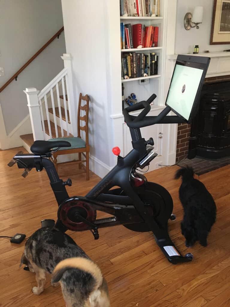 vacation rental with peloton bike plus